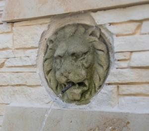 kašna lev